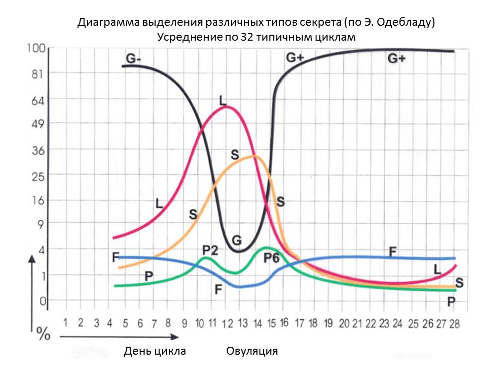 Шеечный секрет - выделение по дням типичного цикла